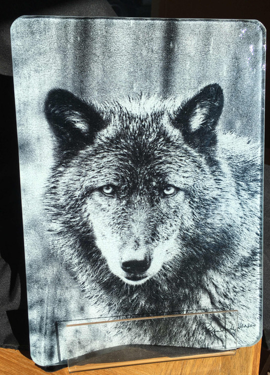 Wolf - Black & White - Glass Cutting Board -  7.75in x 10.75in