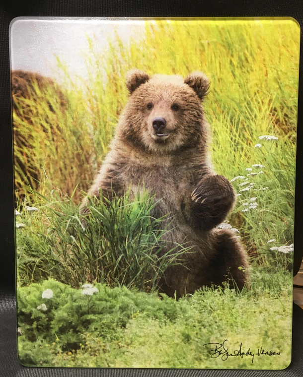 Little Bear - Large Glass Cutting Board - 12 in x 15 in