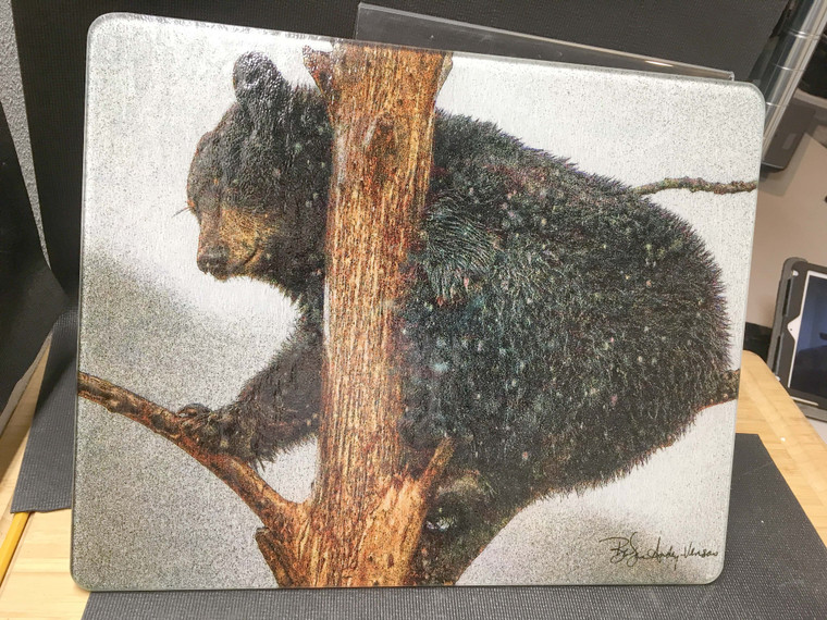 Bear In Tree - Large Glass Cutting Board - 12 in x 15 in