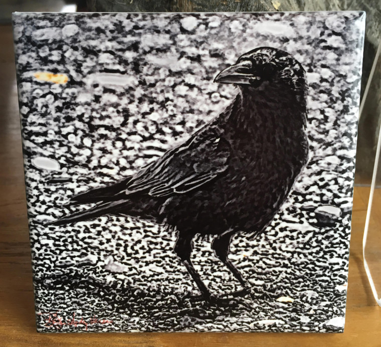 Ceramic Tile or Coaster -Crow Black and White 4.25 In x 4.25 In