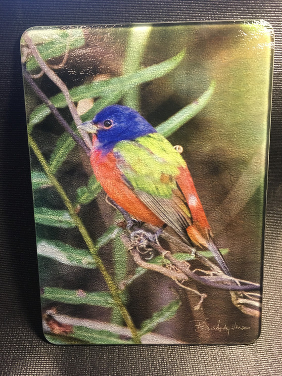Painted Bunting Glass Cutting Board 7.75in  x 10.75in