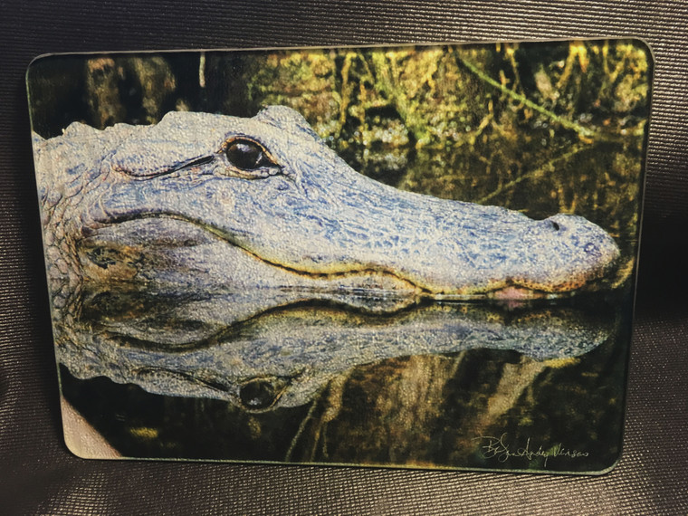 Gator Glass Cutting Board 7.75in  x 10.75in