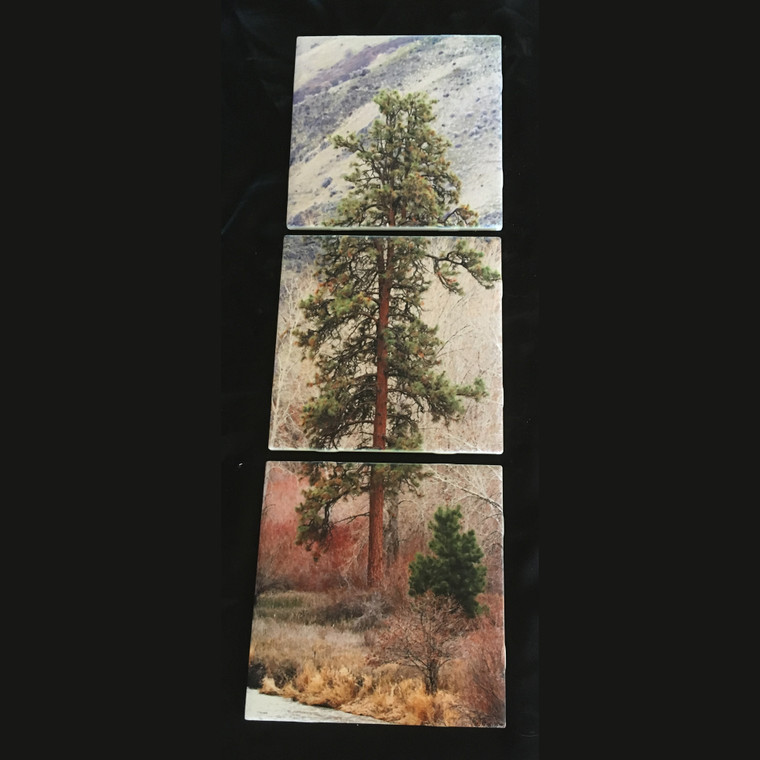 Canyon Pine Tile Mural SATIN FINISH - 3 - 6 x 6 in Tiles (6 in x 18 in)