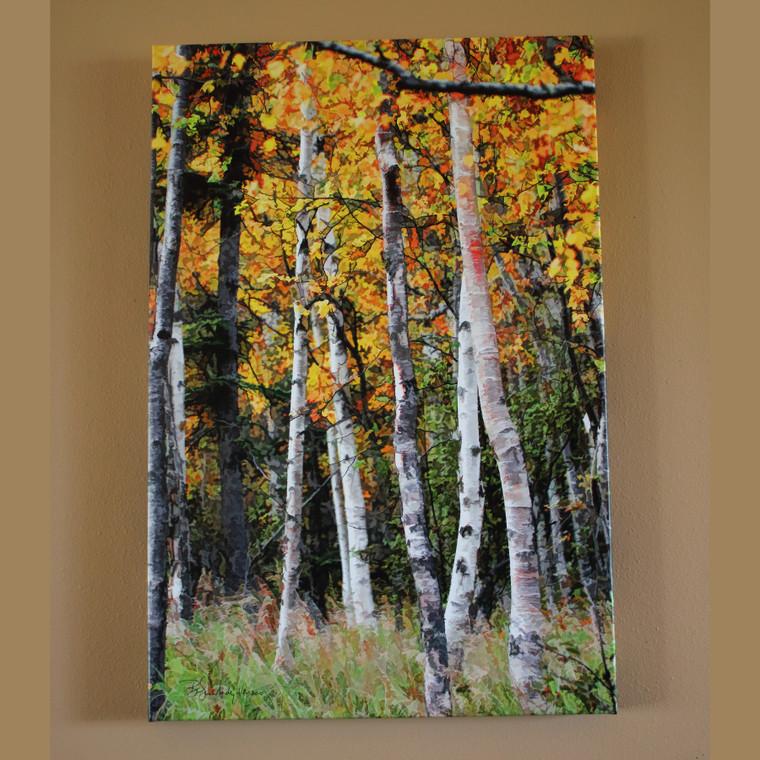 Fall Aspen - Canvas Print 30 In x 20 In x 1.5 In
