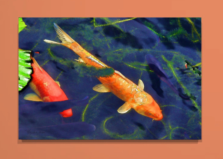 Kauai Garden Koi Canvas print - 30 x 20 x 1.5 inches