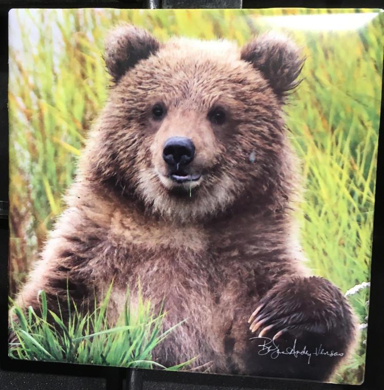 Ceramic Tile or Coaster - Little Bear  4.25 In x 4.25 In