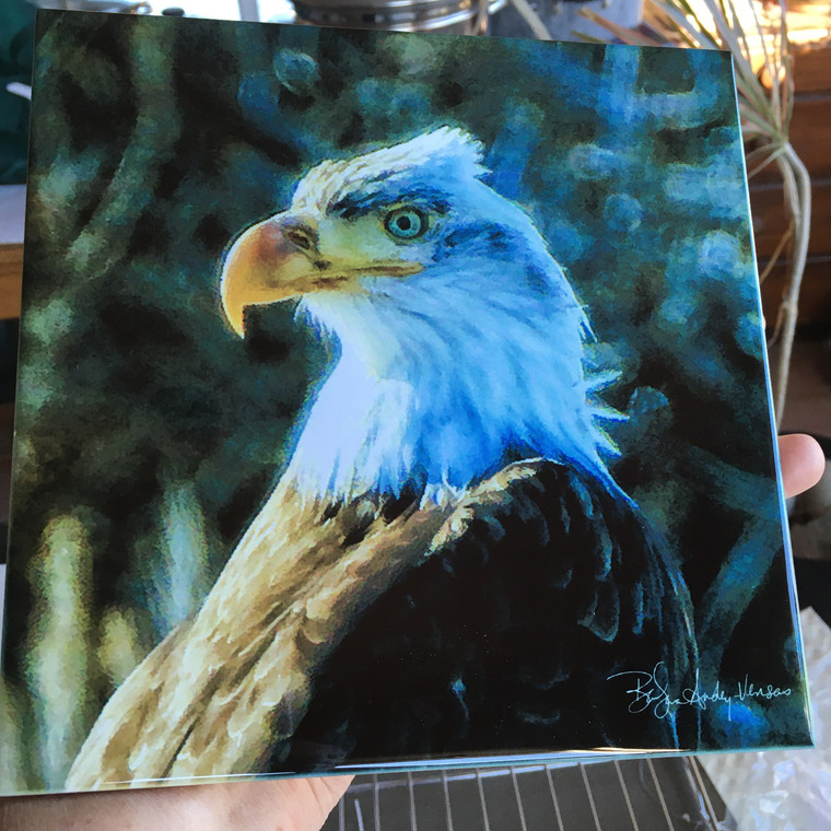 Decorative Tile - Young Eagle 8 in x 8 in