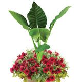 """Tropical Cherry 16"""" Planter"""