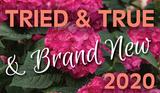 Tried-N-True & Brand New!