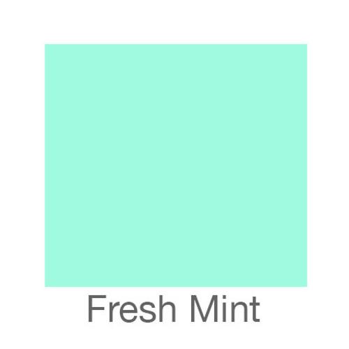 """EasyPSV Permanent-12""""x12""""-Fresh Mint"""