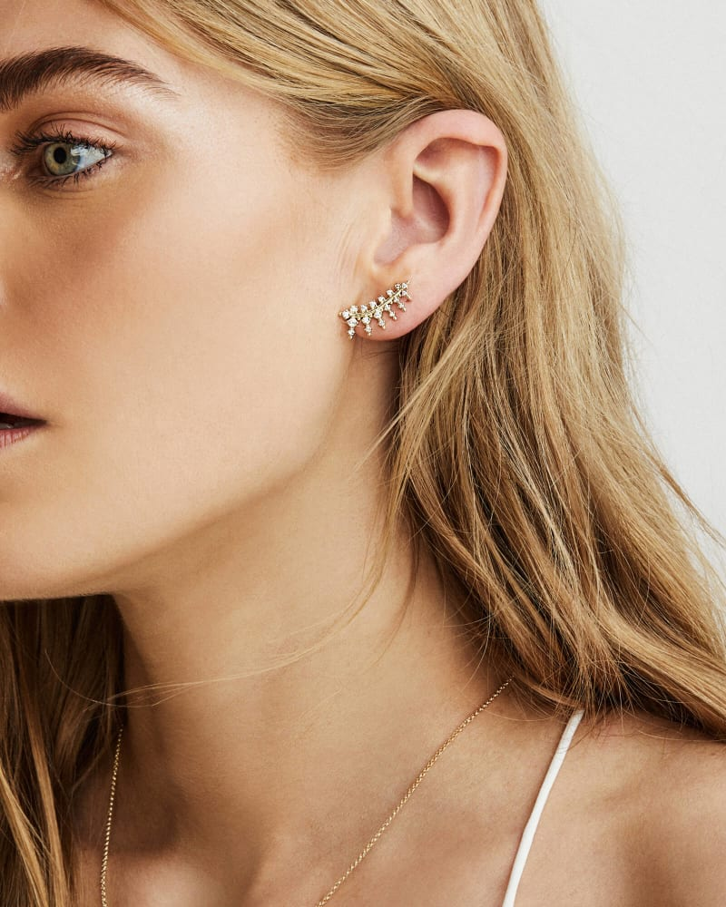 Laurie Silver Ear Climbers