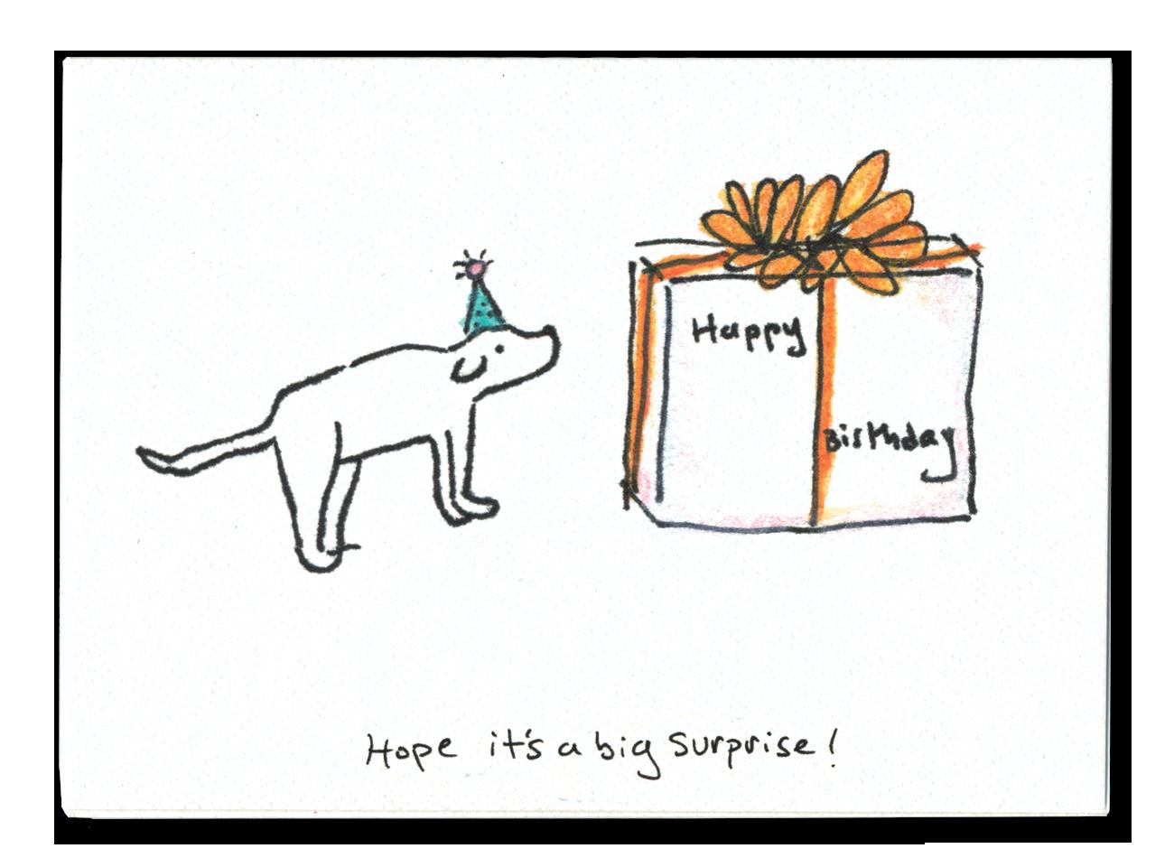 Hope It's a Big Surprise