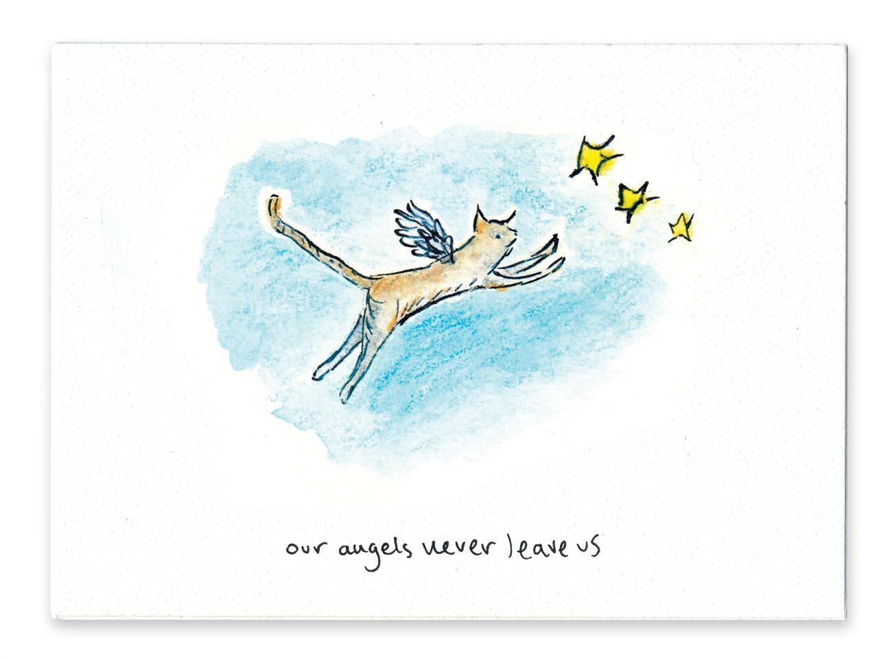 Our Angels Never Leave Us (Cat)