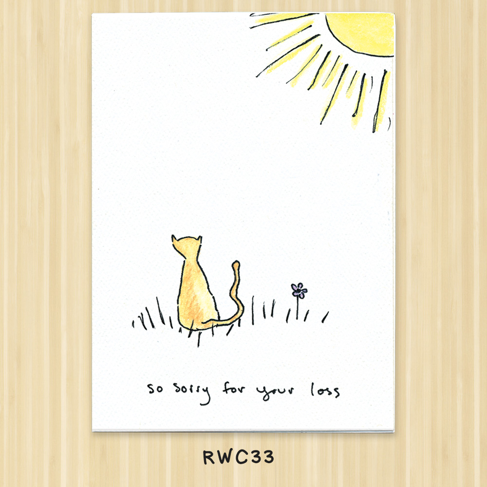 so sorry cat or kitten greeting card
