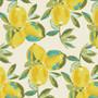 Yuma Lemons Mist