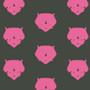 Triceratops Pink