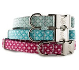 BYOB Design Your Own Dog Collar Classes at Sophisticated Pup