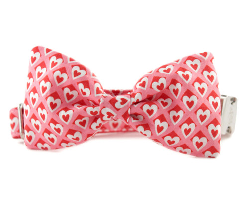 Heart to Heart Bow Tie Dog Collar