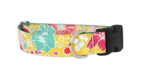 Luau Dog Collar