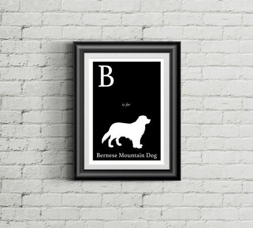 B is for Bernese Mountain Dog Alphabet Art Print