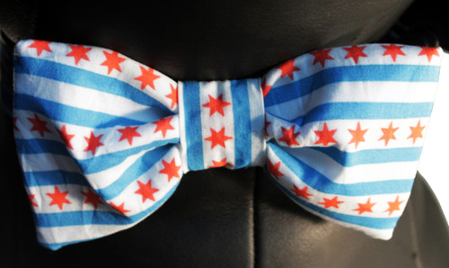 Chicago Flag Bow Tie Dog Collar Set