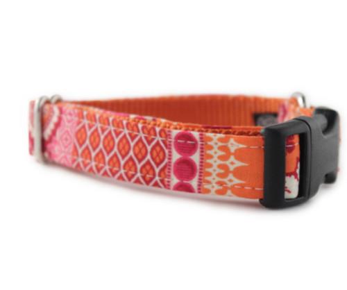 Ishya in Orange Dog Collar