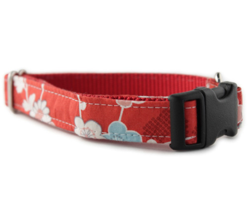 Azalea in Red Dog Collar