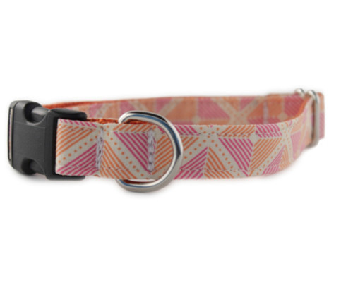 Ainsley in Orange Dog Collar