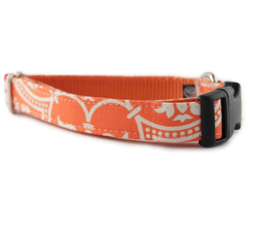 Flynn Dog Collar
