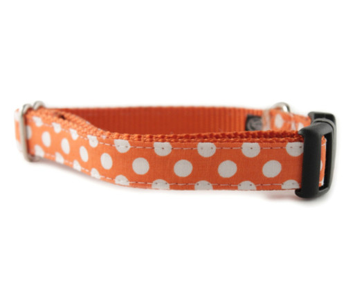Tangerine Dot Dog Collar