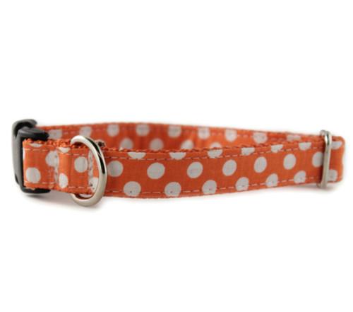 Tangerine Dot Dog Collar