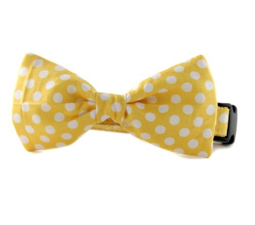 Lemon Dot Bow Tie Dog Collar