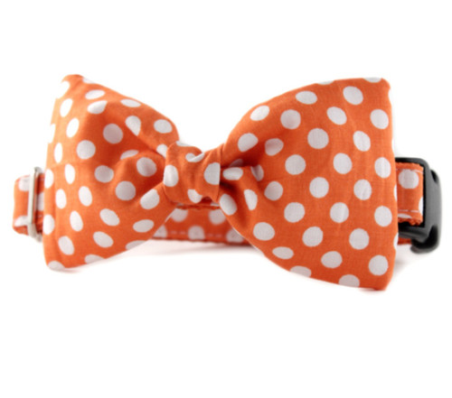 Tangerine Dot Bow Tie Dog Collar