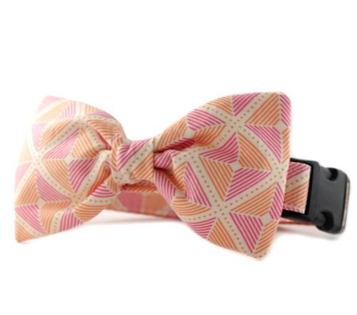 Ainsley in Orange Bow Tie Dog Collar
