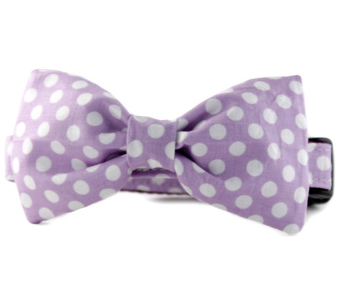 Lilac Dot Bow Tie Dog Collar