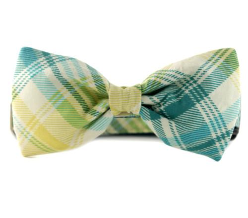 Garden Plaid Bow Tie Dog Collar
