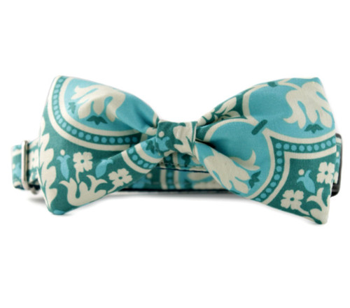 Abilene Bow Tie Dog Collar