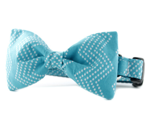 Aqua Splash Chevron Bow Tie Dog Collar