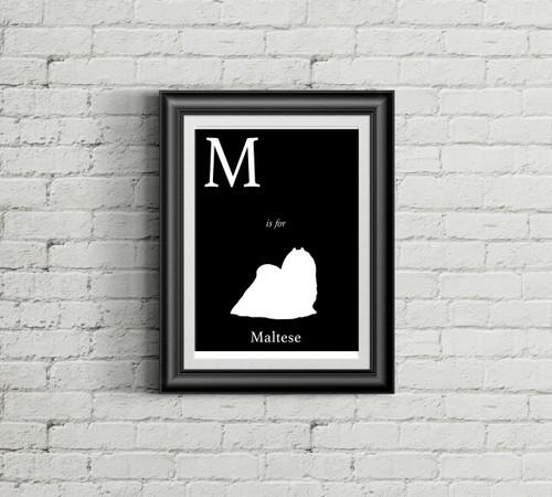 M is for Maltese Alphabet Art Print