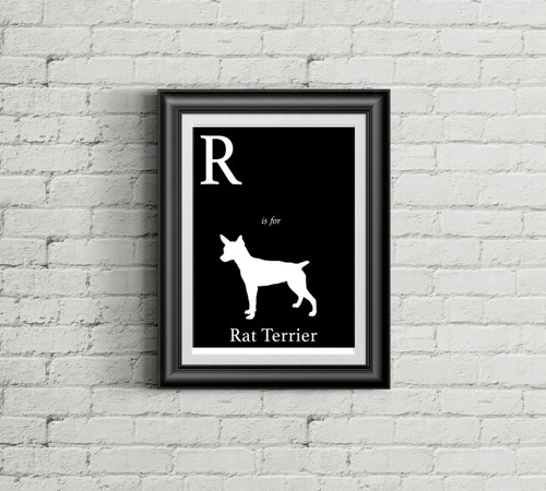 R is for Rat Terrier Alphabet Art Print