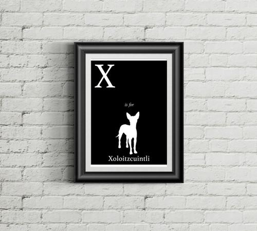 X is for Xoloitzcuintli Alphabet Art Print