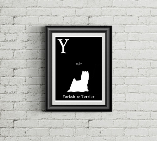 Y is for Yorkshire Terrier Alphabet Art Print