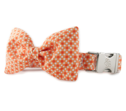 Tangerine Tiny Dot Bow Tie Dog Collar