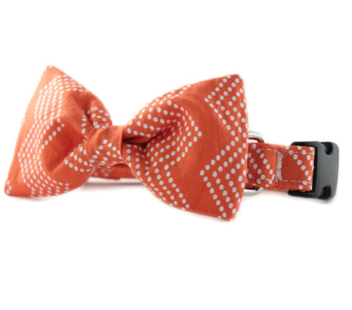 Orange Splash Chevron Bow Tie Dog Collar