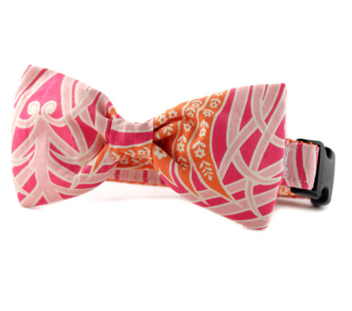 Tangerine and Pink Bow Tie Dog Collar