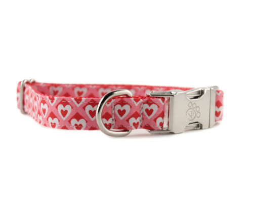 Heart to Heart Dog Collar