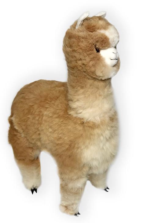 "Life-Size Alpaca Stuffed Figure 36"" Main Image"