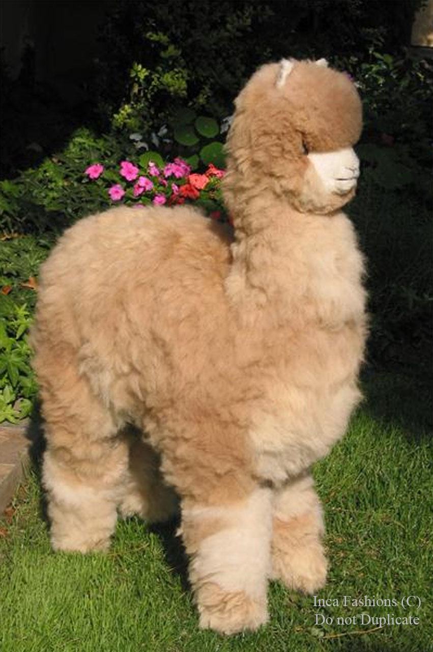 "Life-Size Alpaca Stuffed Figure 36"" In garden 1"