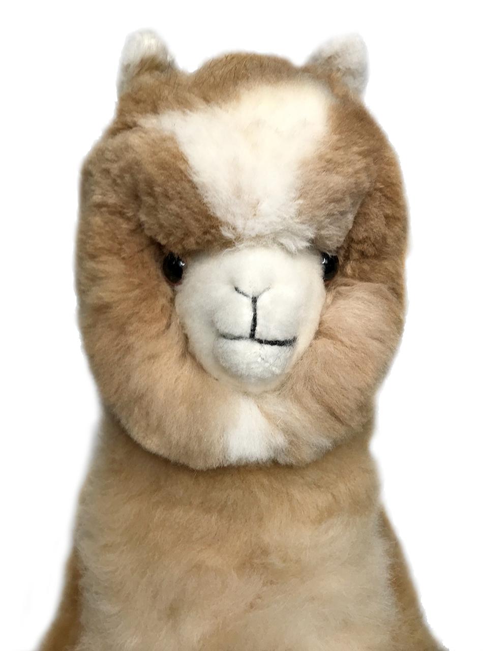 """Life-Size Alpaca Stuffed Figure 36"""" Face"""