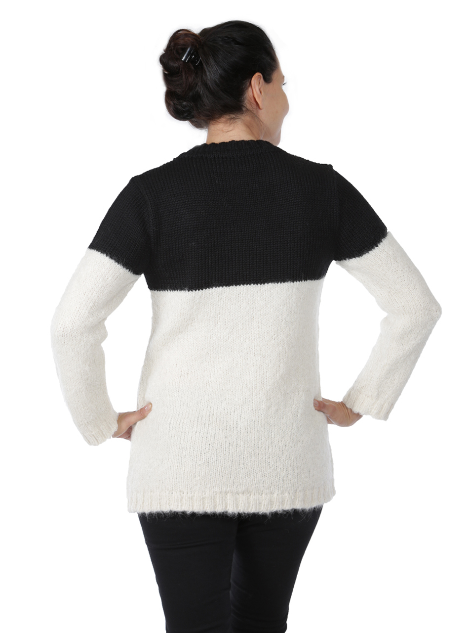 Edie Colorblock Pullover  Back on Model